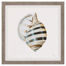 Modern Shell With Teal I Framed Art