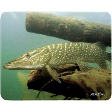 Northern Pike Cutting Board