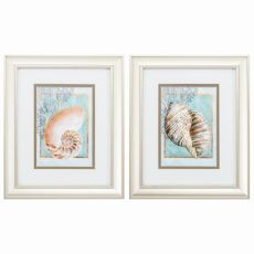 Nautilus Turban Set of 2 Framed Beach Wall Art