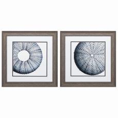 Sea Urchin Set of 2 Framed Beach Wall Art