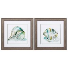 Malecon Shell Set of 2 Framed Beach Wall Art