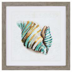 Shell Iii Framed Beach Wall Art