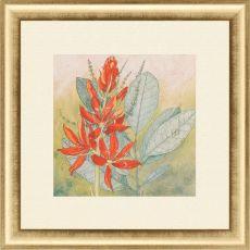 Crimson Tropical I Framed Art