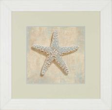 Aqua Starfish Framed Art