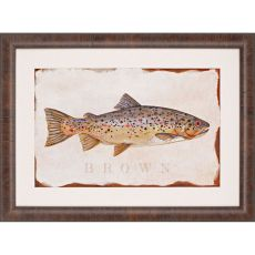 Brown Trout Framed Art
