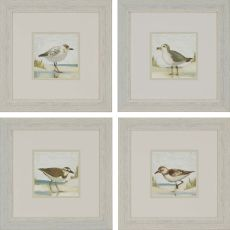 Beach Birds Pk/4 Framed Art