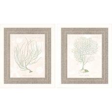 Gorgonia Pk/2 Framed Art
