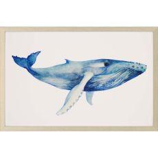 Whale's Song II Framed Art
