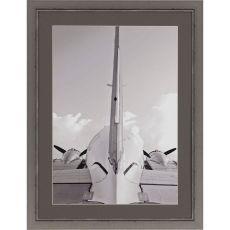 Airborne Framed Art