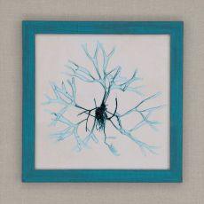 Coastal Seaweed II Framed Art
