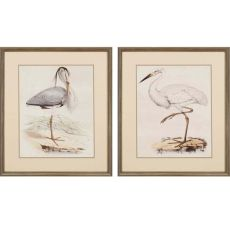 Antique Herons Pk/2 Framed Art