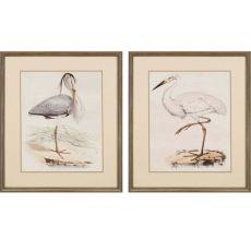 Antique Herons Pk/2 Framed Art