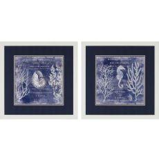 Deep Blue Sea Pk/2 Framed Art