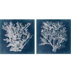 Azure Coral Pk/2 Framed Art