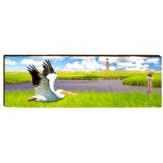 American White Pelican Flying Wall Art