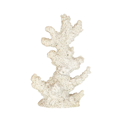 Sand Coral - Extra Large