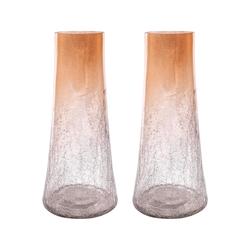 Brandy Set of 2 Vases Small