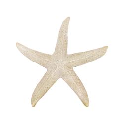 Rockport Extra Large Starfish