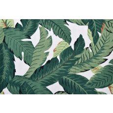 Barrigona Palm Indoor / Outdoor Hook