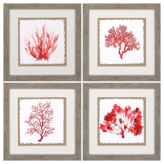 Red Coral Framed Art Set Of 4