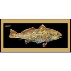 Redfish Mat With Border Floor Mat