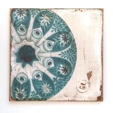 Sea Urchin Zoom Lithograph Art