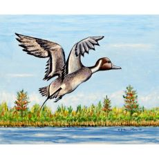 Pintail Duck Outdoor Wall Hanging 24X30
