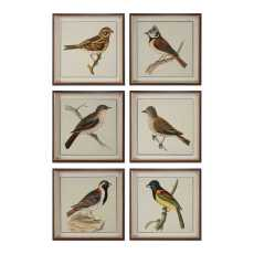 Uttermost Spring Soldiers Bird Prints, S/6