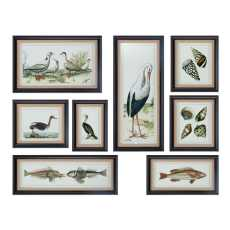 Uttermost Seashore Collage Prints, S/8