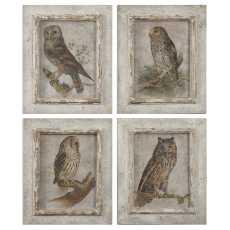 Uttermost Owls Framed Art, S/4
