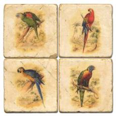 Parrot Coasters Set Of 4