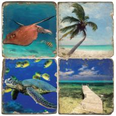 Tropical sea life Coasters S/4