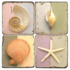 Shell Art Coasters  S/4