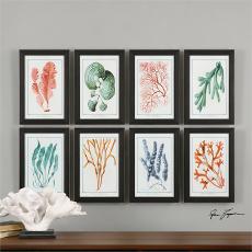 Colorful Algae Framed Art S/8