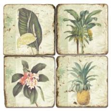Tropical Plants Coasters S/4