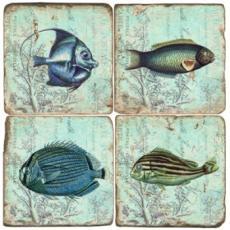 Fish Marble Coasters