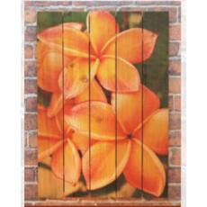 Tropical Flower Wood Art