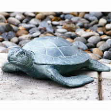 Garden Turtles Set Of 2