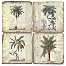 Palms Coasters S/4