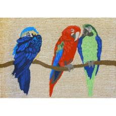 Parrots Bright Indoor Outdoor Rug