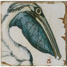 Pelican Zoom Lithograph Art