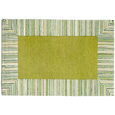 Pin Stripe Border Green Rug Indoor Outdoor Rug