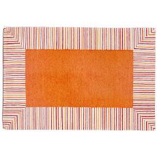 Pin Stripe Border Orange Rug Indoor Outdoor Rug