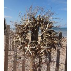 Seaside Driftwood Wreath