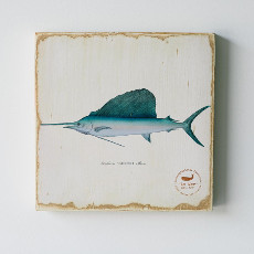 Sailfish Lithograph Art