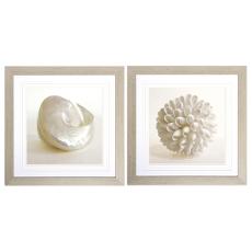 Shell Framed Art Set of 2