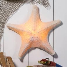 White Embossed  Starfish Lamp