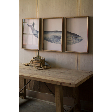Triptych Framed Whale Prints Under Glass