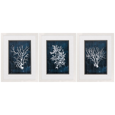 Wood Coral Blue Framed Art Set Of 3