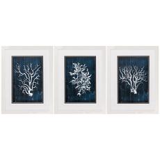 Wood Coral Blue Framed Art Set of 3
